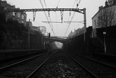 Gare d' Argenton-sur-creuse (à l'oeil de verre photographie) Tags: sncf train ferroviaire rail rails railroad railway station caténaire brouillard fog 36 36200 argenton sur creuse indre region centre
