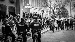 2017.01.29 No Muslim Ban Protest, Washington, DC USA 00291