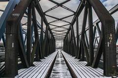 Hafenbahnbrücke Waltershof (Elbmaedchen) Tags: hafenbahnbrücke waltershoferhafen hamburg waltershoferdamm fachwerkbrücke hpa steel bridge railway explore328