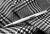 Black or White? (esala.kaluperuma) Tags: art design macro digital kunst τέχνη arte изобразительноеискусство résumé αφηρημένο zusammenfassung аннотация abstrakt esala kaluperuma photograph uk midlands leicestershire sony esalakaluperuma sonyxperiaz2