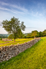 Crackpot (matrobinsonphoto) Tags: crackpot swaledale north yorkshire dales national park fields rural natural dry stone wall walls yellow orange blue sky tree barn field hay meadow meadows bloom buttercups flowers golden hour sunset evening summer