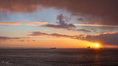 hazy sunset (Wilma van Oorschot) Tags: wilmavanoorschot angelphotography sunset westerschelde hans hansweert zeeland ships sund sundown nature outdoor river orange colors olympusem5 olympusomde5 mzuikodigital1250mm
