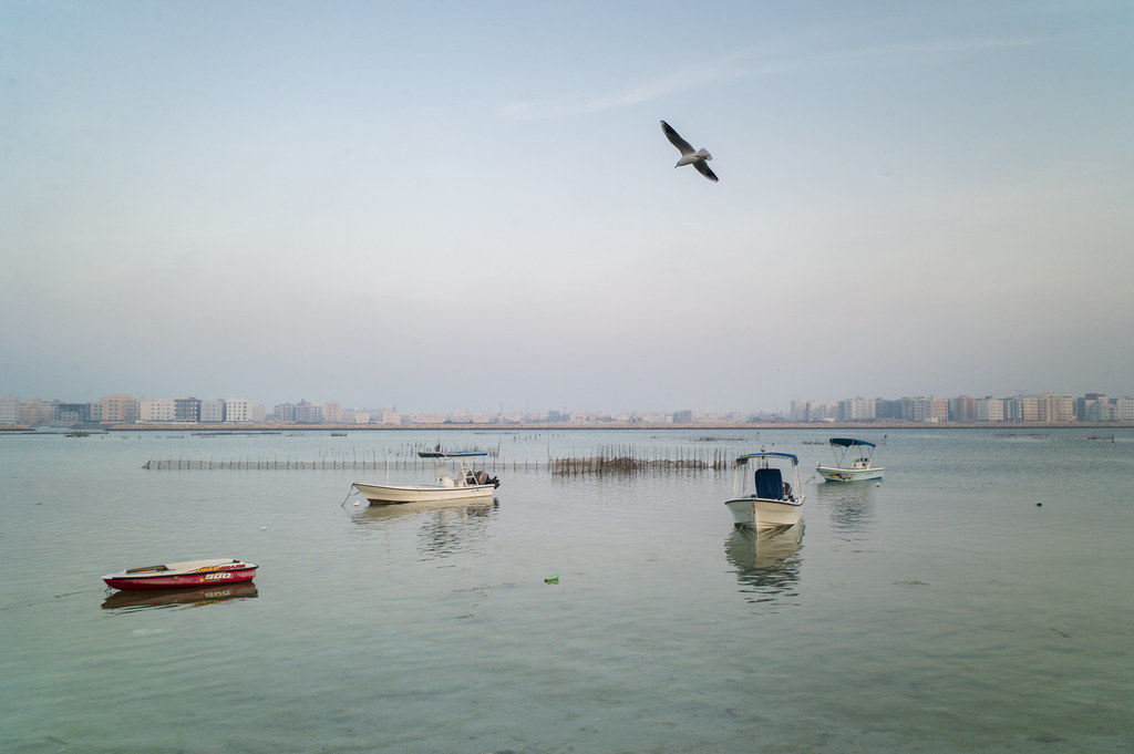 bahrain bay essay There is so much more we'd like to tell you about michigan technological university if you're a crazy smart prospective undergraduate student, fill out the form.
