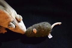comment expliquez vous qu'on puisse avoir dans le nez, des gens qu'on ne peut pas sentir ?? (marycesyl,) Tags: peluches rat souris
