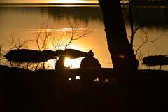COOKING IN THE WILD (Explore 2017-01-30) (pro.henrik) Tags: fs170129 fotosondag matlagning