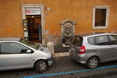 Rome 2010 522