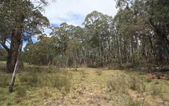 345 Kybeyan Road, Nimmitabel NSW