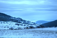 Winter with All its Beauty. (mmalinov116) Tags: winter snow сняг зима beautiful beauty landscape nature blue forest tree ngc