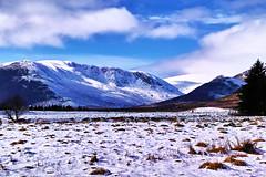 Cold snap in the glen (Fr Paul Hackett) Tags: newtonmoreglen snow trees mountain sky
