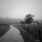 "endless road #blackwhite #monochrome #Belgium #Flemishardennes <a style=""margin-left:10px; font-size:0.8em;"" href=""http://www.flickr.com/photos/117161355@N07/20034174624/"" target=""_blank"">@flickr</a>"