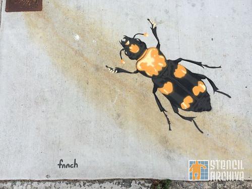 fnnch_WesternAddition_yellowbug
