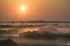 TM_10067 (tmutz6405) Tags: nebel polen sonnenaufgang breathtaking pl masuren podlaskie burzyn breathtakinggoldaward breathtakinghalloffame