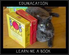 EDUMACATION - LEARN ME A BOOK (ArneKaiser) Tags: 1stgrade bobbooks hws haleakalawaldorfschool hawaii knorfelchen knorretje knörfelchen maui mrkaisersclass tonyblair waldorf books cat funny literacy reading flickr