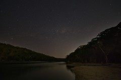 Starry night by the water (mblaeck) Tags: trees sky nature water night river stars landscape sand nightscape shoreline nightsky starry starrynight milkyway sutherlandshire starrysky grayspoint starrynightsky thesutherlandshire