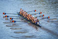 IMG_2989October 04, 2015 (Pittsford Crew) Tags: crew rowing regatta geneseeriver headofthegenesee pittsfordcrew