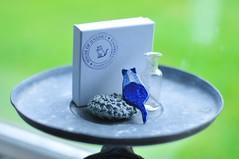 7/11.2015 - a little cat treasure (julochka) Tags: cat ceramics handmade brooch delft 365 etsy