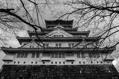 Osaka Castle (M.G Shots) Tags: park winter white black castle monochrome japan japanese palace osaka burg  naniwa schwarzweis otemon 1583 azuchimomoyama hirajiro