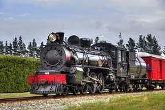 "Ab 608 ""Passchendaele"" II (Dina275_) Tags: new train ab steam zealand hdr 608 passchendaele"