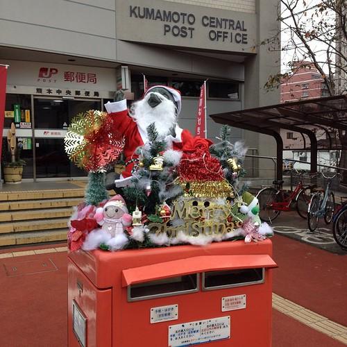 Le #tanuki de la poste de #Kumamoto est prêt pour Noël