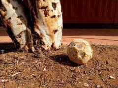 the saddest football I have ever seen. (J.T. Ratcliff) Tags: aperture ipod desert australia outback nik southaustralia soccerball outbackaustralia ernabella pukatja apylands colorefexpro30 define20 tonalcontrastfilter ipodtouch5 anangupitjantjatjarayankunytjatjaralands