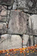Permanent and ephemeral (Tigra K) Tags: kyōtoshi kyōtofu japan jp 2012 castle color garden rock shape wall