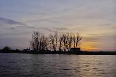 Sunrise (Capturedbyhunter) Tags: autumn 2 sol portugal sunrise landscape europa do pentax outdoor 28mm paisagem santarm fernando f2 28 marques petri outono k5 nascer waterscape ribatejo coruche f20 sorraia caador fajarda