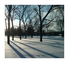 Mayfair Park (ric) Tags: snow edmonton alberta mayfair imagemagick sorry uploadscript imagedatanexus12564f27100 im:opts=crop2448x22006120level110008 photo:id=232276623437c9910686bojpg notquitesquareenoughremovedfromthesquaredontpostthenotsquarephotogrouppool