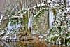 Ice Age (wibblux) Tags: alb schwäbischealb winter badenwürttemberg ice nature rock snow weather