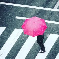 nissan (MDSalary) Tags: snow umbrella suwon nissan red