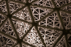Inside a snowflake (The Adventurous Eye) Tags: inside snowflake structure ice snow molecular lattice