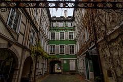 Strasbourg Alley (lncgriffin) Tags: strasbourg strossburi alsace france républiquefrançaise europe europa ruedesjuifs halftimber architecture shops oldtown grandeîle alley ivy travel nikon d750 zeiss distagon distagon2128zf