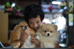 boy with his dogs (the foreign photographer - ฝรั่งถ่) Tags: curly haired boy two dogs khlong thanon portraits bangkhen bangkok thailand nikon d3200