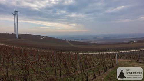 Weinberge und Windräder bei Zornheim