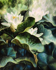 Waterlillies in sunlight (~viento~del~mar~~) Tags: flowers waterlillies pastel watercolour nature