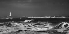 high tide (~Ventnor~) Tags: whitleybay mono blackwhite monochrome wave waves surf curl curling high tide tidal break breaking breakers beach coast coastal sea seascape shore stmarys lighthouse sidelight eveningcanon 7d 24105l seascapes landscapes tyneside north northeast uk england island