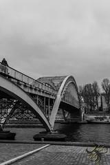 Passerelle (Thierry Poupon) Tags: paris passerelledebilly pont seine acier noiretblanc iledefrance france fr bridge black white monochrom arch steel curve courbe