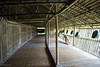 IMG_2459 (Cthonus) Tags: geotagged malaysia borneo longhouse rungus runguslonghouse