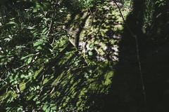 light/shadow (hnrk hlndr) Tags: summer suomi finland sysmä petsamo