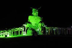 GreenMan2015_01_FotoPlus