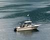 British Columbia Luxury Fishing & Eco Touring 36