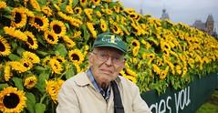 Joop bij het zonnebloemenveld op het museumplein (0me Joop) Tags: museumplein van gogh zonnebloemen labyrint