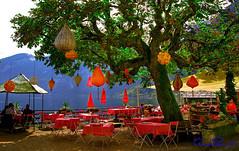 Hallstatt Austria (TARIQ HAMEED SULEMANI) Tags: travel summer tourism colors trekking canon austria tariq hallstatt supershot concordians sulemani tariqhameedsulemani