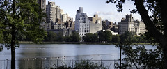 Central Park Reservoir (Joe Josephs: 2,650,890 views - thank you) Tags: nyc newyorkcity art centralpark fifthavenue museums centralparknewyork arthistory urbanlandscapes travelphotography newyorkcityskyline urbanparks jacquelinekennedyonassisreservoir nikon105mm28 nikond810 joejosephs copyrightjoejosephs2014