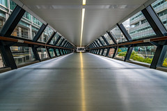 lines and symmetry (Steve J Cottis) Tags: london walkway docklands canarywharf tokina1116mm28 nikond5300 linesandsymmetry crossrailplace