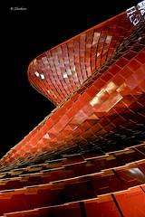 Like a snake - Vanke Pavillon China - Expo 2015 - Milan - Free Hand (G.hostbuster (Gigi)) Tags: milan architecture snake ghostbuster expo2015 chinapavillon gigi49