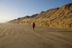Toots heading north (4seasonbackpacking) Tags: winter newzealand beach walking sand hiking dunes dune backpacking nz beaches southisland toots sanddune ta tramping sanddunes 90milebeach ninetymilebeach nobo achara teararoa teararoatrail 4seasonbackpacking fourseasonbackpacking tatrail