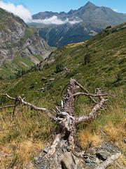 Serre des Tousaus (Manolo Moliner) Tags: walking senderismo pyrénées pirineos randonnée gavarnie midipyrénées hautespyrénées pirineocentral