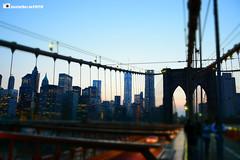 JaimeSelfa-0513 (Jaime Selfa) Tags: newyork nuevayork lagranmanzana