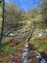 Winterspaziergang Mörschieder Burr_0012_bearbeitet-1 (AndreasHerbert) Tags: nationalpark wanderungen mörschied winterspaziergangmörschiederburr mörschiederburr winterspaziergangmã¶rschiederburr mã¶rschiederburr mã¶rschied