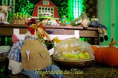 FAZENDINHA DO TULIO 2015 FINAL-13 (agencia2erres) Tags: aniversario 1 infantil festa ano fazenda fazendinha